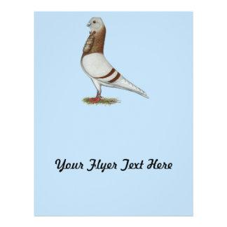 Valencian Figurita Pigeon Flyer