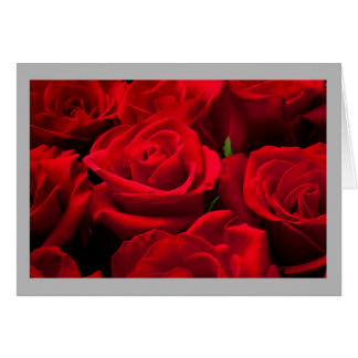 Valentine 26 Classic red roses Card