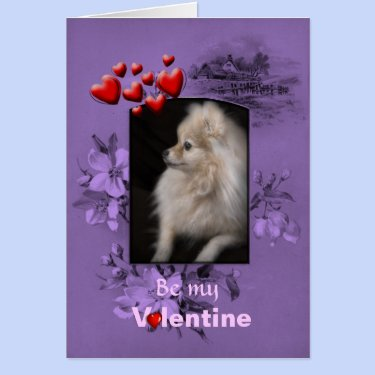Valentine Adorably Cute Pomeranian Puppy Greeting Card