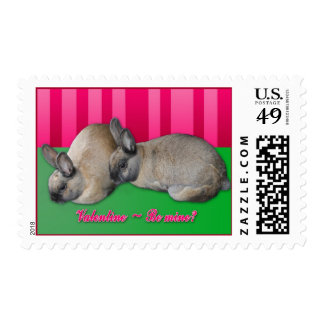 Valentine be mine, I love you, two bunnies Postage Stamp