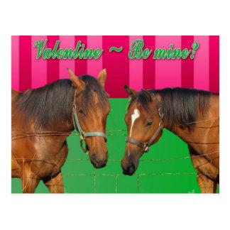 Valentine Be Mine I Love You Two Horses Postcard