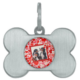 Valentine Bernese Mountain dog Heart Pet Tag