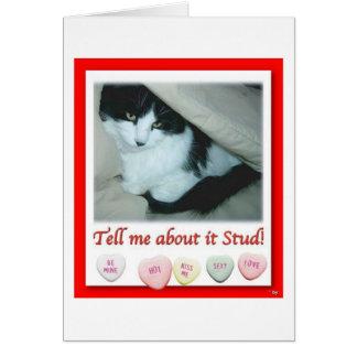 Valentine Black and White Cat Card