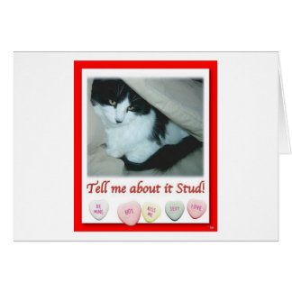 Valentine Black and White Cat Greeting Card