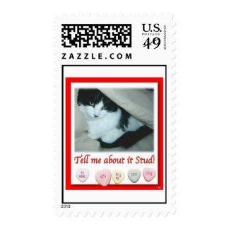 Valentine Black and White Cat Postage