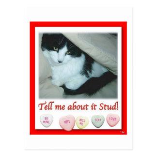 Valentine Black and White Cat Postcard