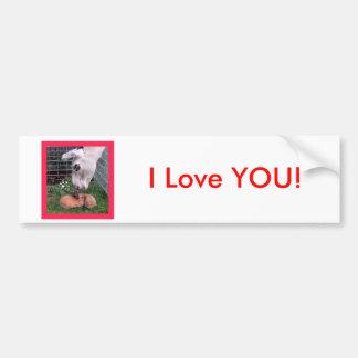 Valentine Bunny LLama Love I Love You Bumper Sticker