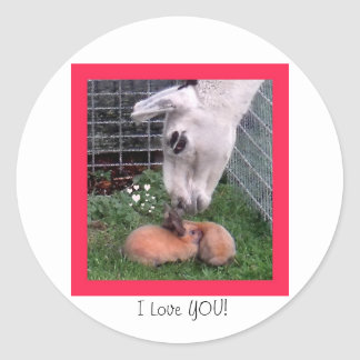 Valentine Bunny LLama Love I Love You Classic Round Sticker