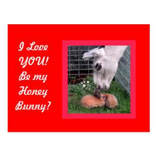 Valentine Bunny LLama Love I Love You Postcard