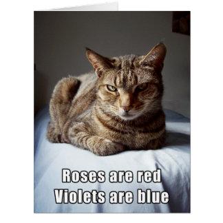 Valentine Cat funny poem BIG Card