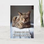 Valentine Cat funny poem Holiday Card