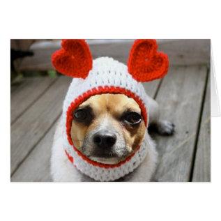 Valentine Chihuahua Card at Zazzle