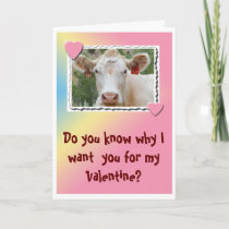 Valentine Cow-Greeting Card