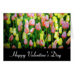 valentine day tulips cards