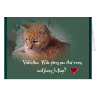 Valentine From the Cat Card