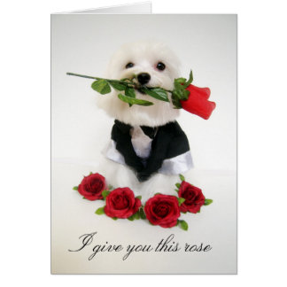 Valentine Greeting Greeting Card