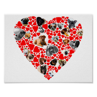 Valentine Heart Dog Photo Collage posters