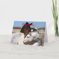 Valentine Horses Holiday Card