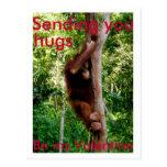 Valentine hug postcard