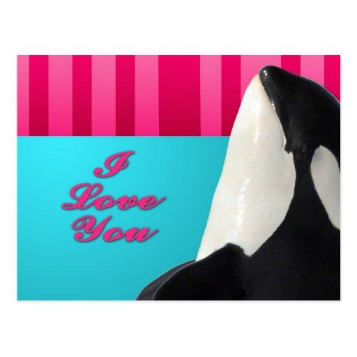 Valentine I love you orca whale Postcards
