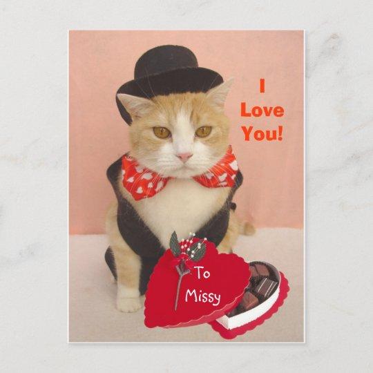 Valentine Kitty Holiday Postcard Zazzle Com