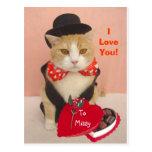 Valentine Kitty Postcard