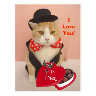 Valentine Kitty Post Card