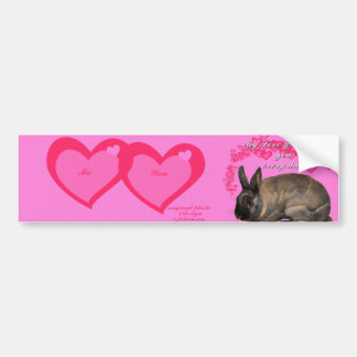 Valentine, my love grows for you daily bunny rabbi bumper sticker