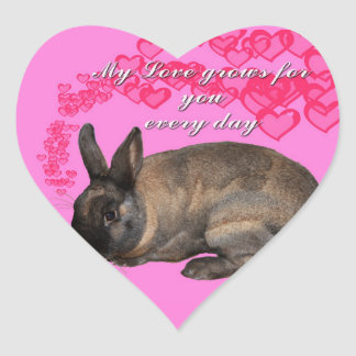 Valentine, my love grows for you daily bunny rabbi heart sticker
