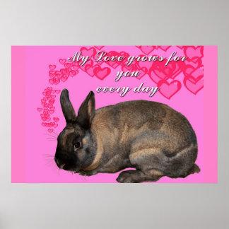 Valentine, my love grows for you daily bunny rabbi print