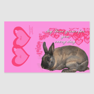 Valentine, my love grows for you daily bunny rabbi rectangular sticker