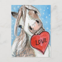 Valentine Pony Postcard Blue Eyed Pinto
