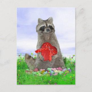 Valentine Raccoon Bandit Holiday Postcard