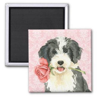 Valentine Rose Beardie Magnet