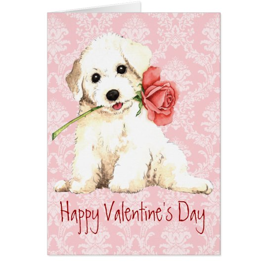 Valentine Rose Bichon Card