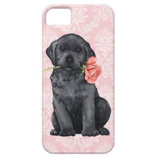 Valentine Rose Black Lab iPhone SE/5/5s Case