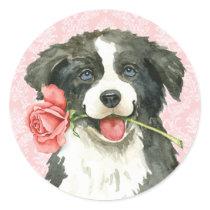 Valentine Rose Border Collie Classic Round Sticker