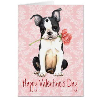 Schön Valentine Rose Boston Terrier Card