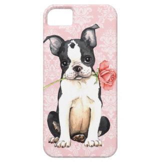 Valentine Rose Boston Terrier iPhone SE/5/5s Case