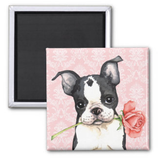Valentine Rose Boston Terrier Magnet