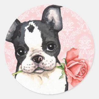 Valentine Rose Boston Terrier Sticker
