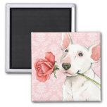Valentine Rose Bull Terrier 2 Inch Square Magnet