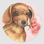 Valentine Rose Dachshund Round Stickers