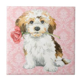 Valentine Rose Havanese Tile