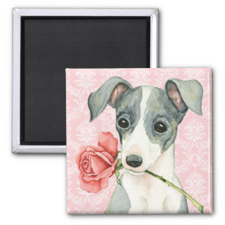 Valentine Rose Italian Greyhound Magnet