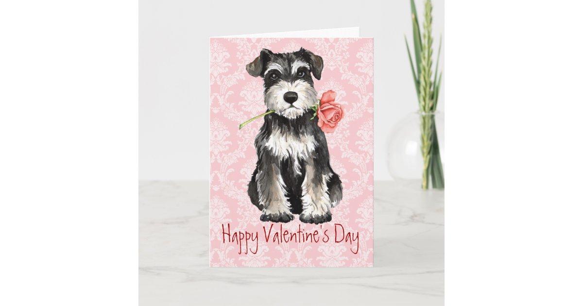 Valentine Rose Mini Schnauzer Holiday Card | Zazzle.com
