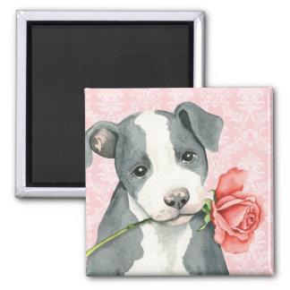 Valentine Rose Pit Bull Magnet