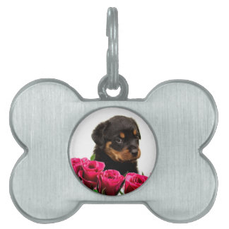 Valentine Rose Rottweiler Puppy Pet Tag