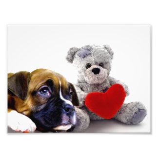 Valentine s boxer puppy photo print