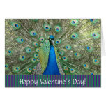 Valentine's Day_ peacock Card